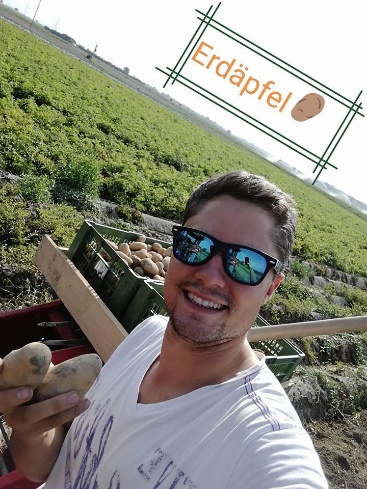 Christian Radl bei der Erdäpfelernte