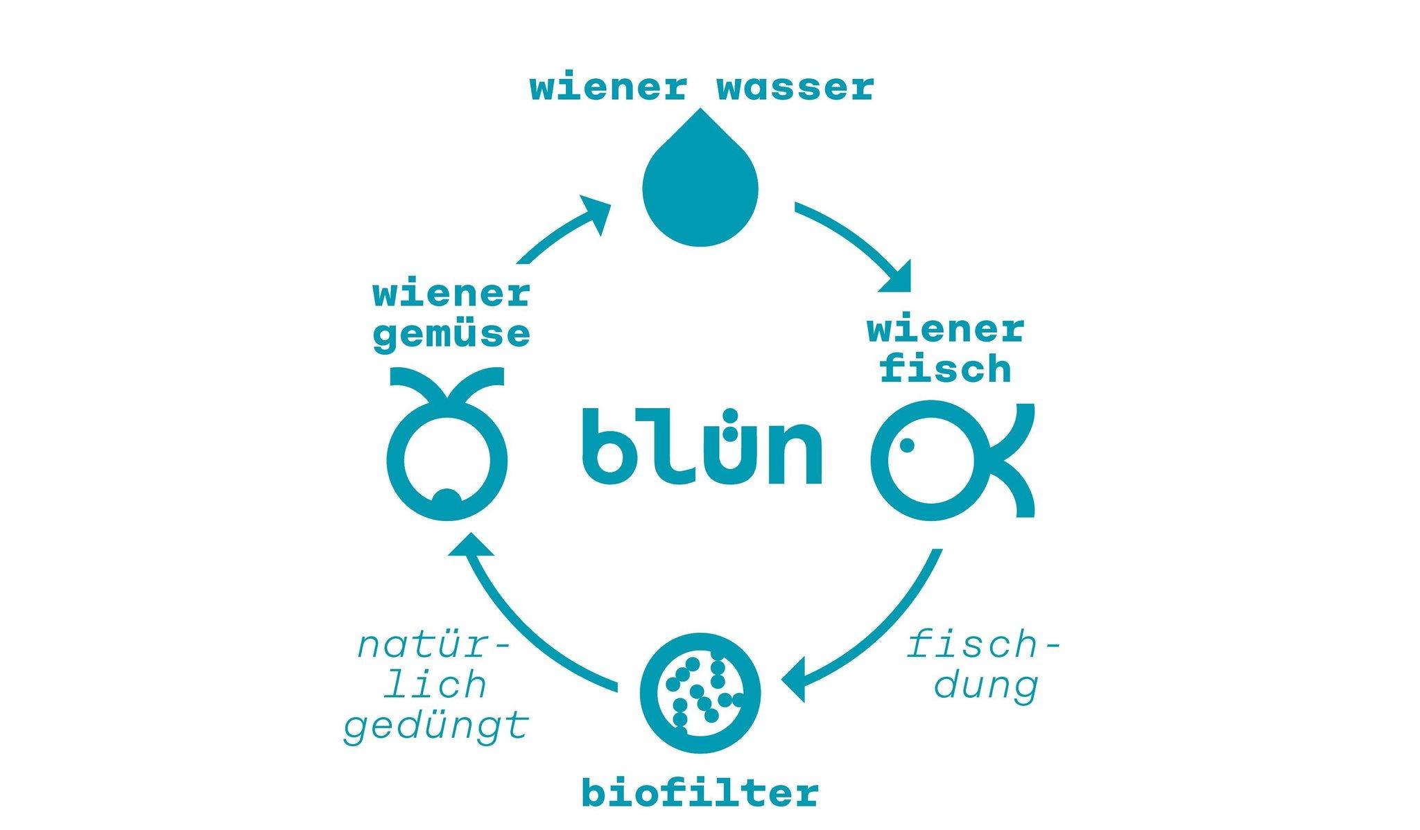 Darstellung des Kreislaufs des Wiener Hochquell Wassers in der Aquaponik Anlage von Blün