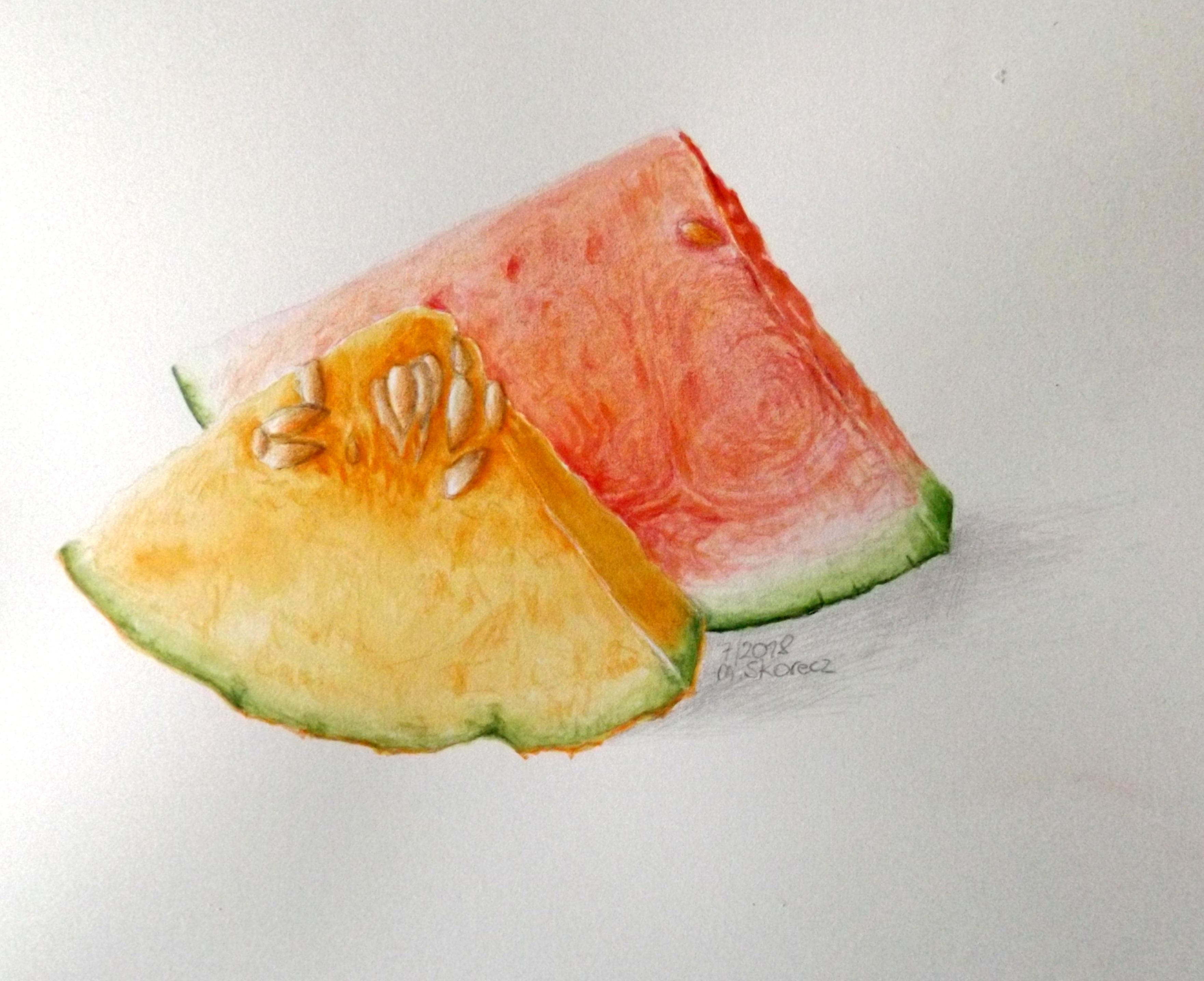 Scheiben Melonen Handgemalt