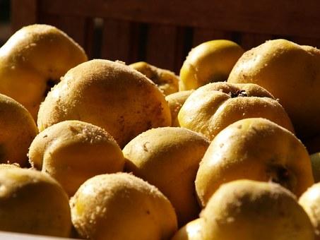 Quitte, die älteste Marmelade der Welt