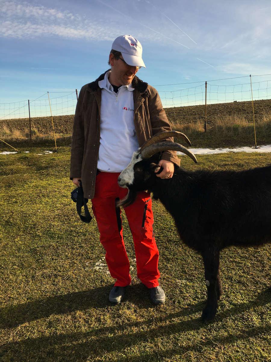 Stühof Tiergestütze Erlebnisse